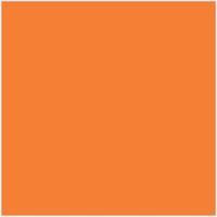 Orange ( Plain )