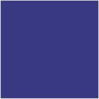Pacific blue ( Plain )