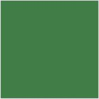 Oasis green ( Plain )