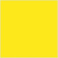 Yellow ( Plain )
